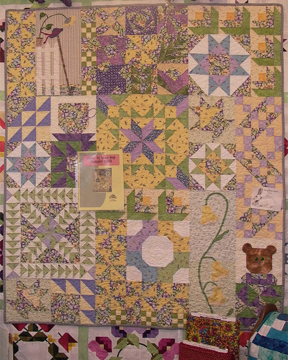 Shop Hop Sampler Quilt